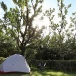 沖縄県のキャンプ情報